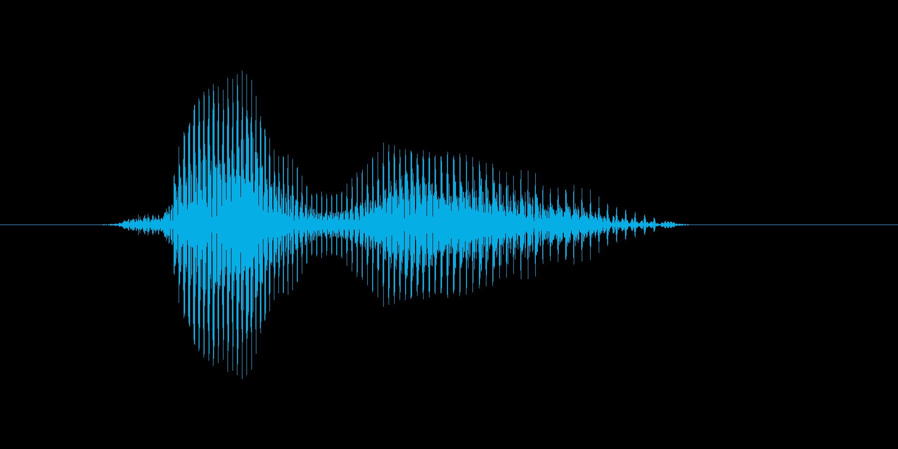 ハワイの再生済みの波形