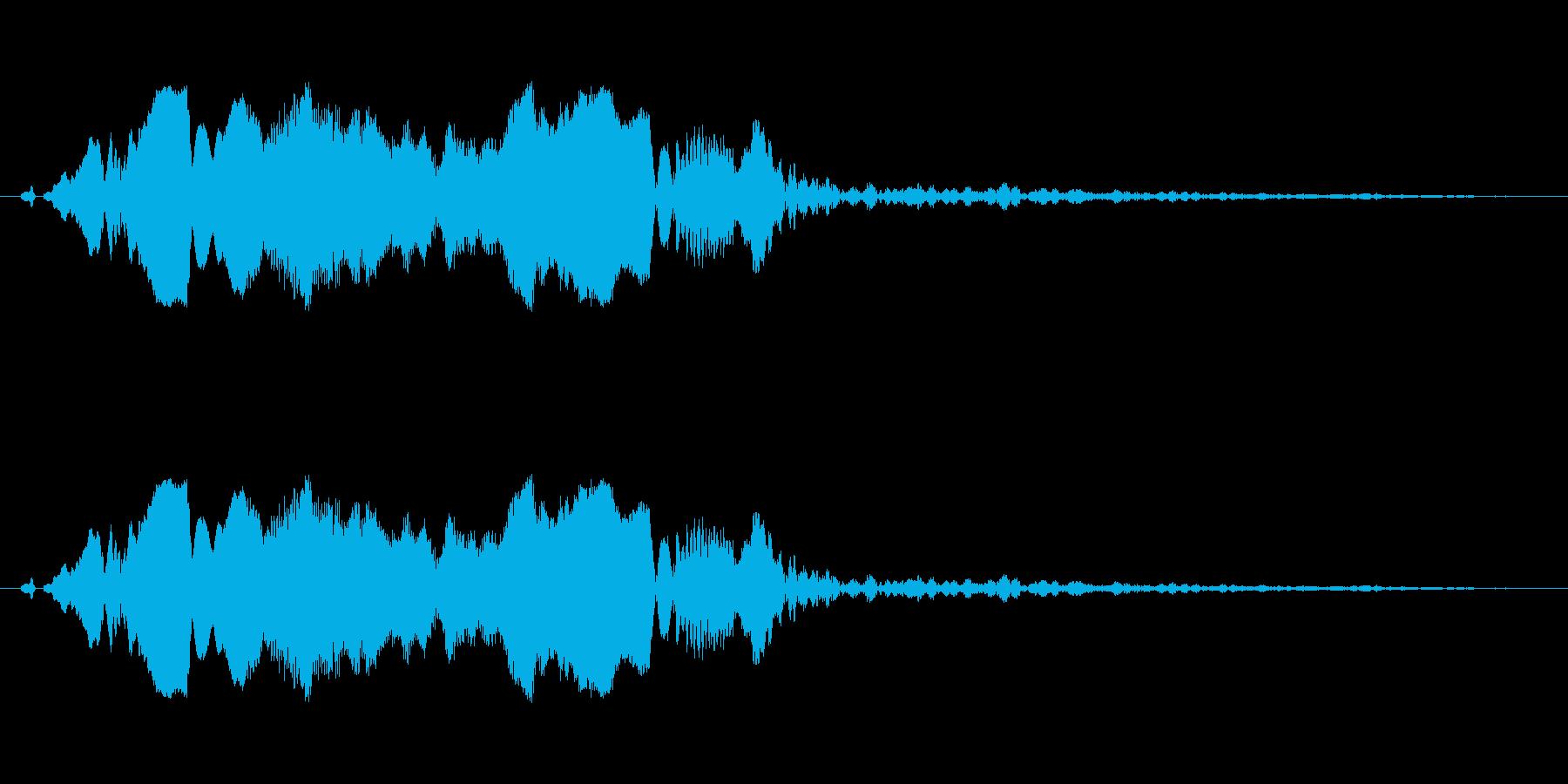 【鷹】とてもリアルな鷹、たかの鳴き声3!の再生済みの波形