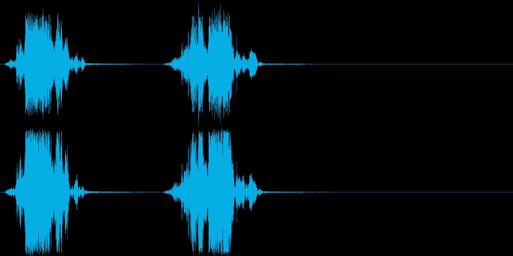 ザクザク 穴掘りの音の再生済みの波形