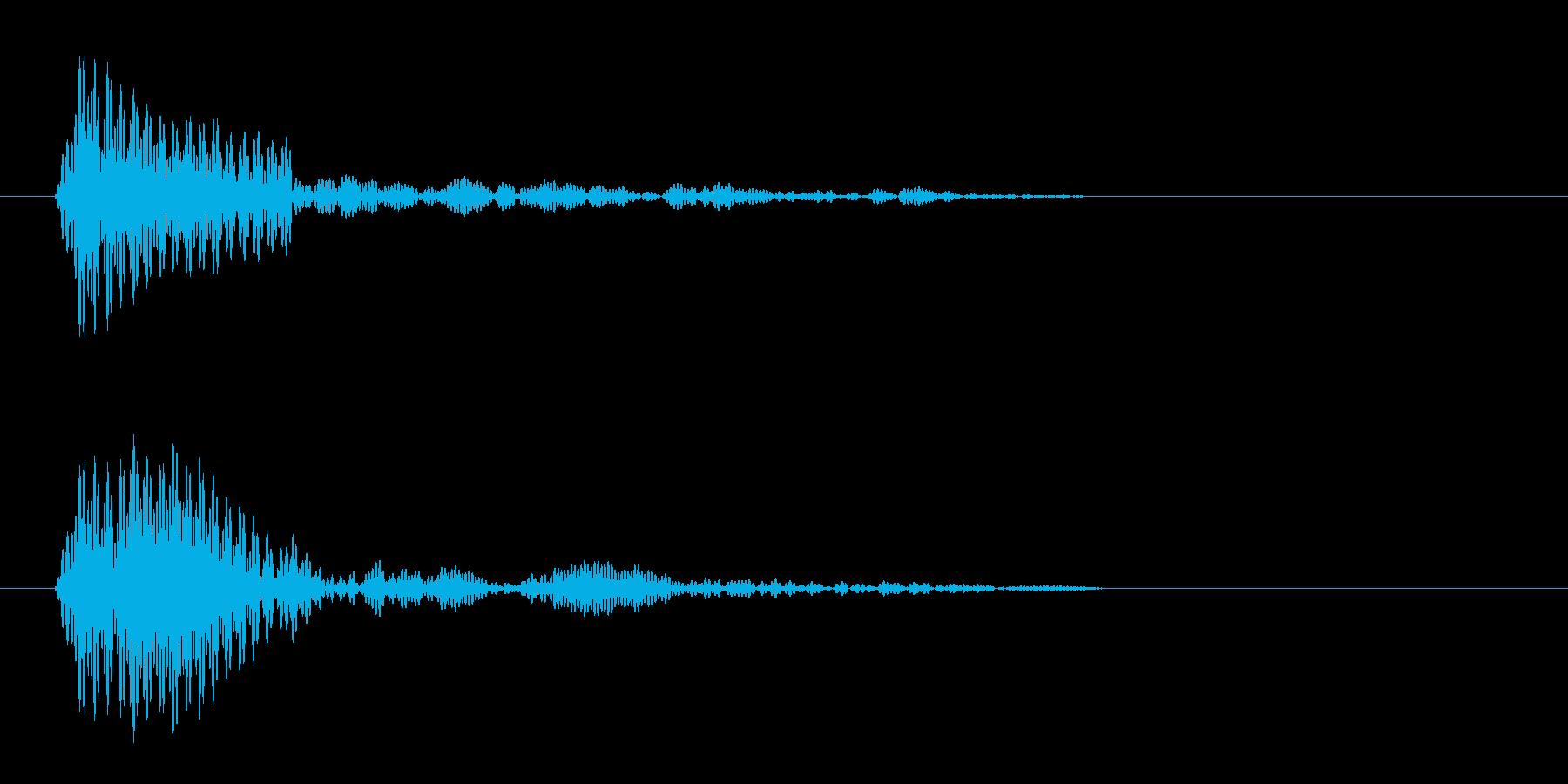 コッ(短めの鶏の声)の再生済みの波形