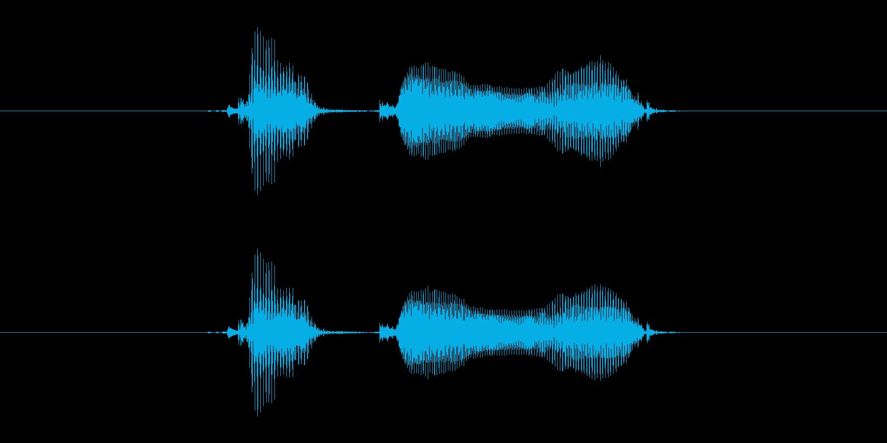 国語の再生済みの波形