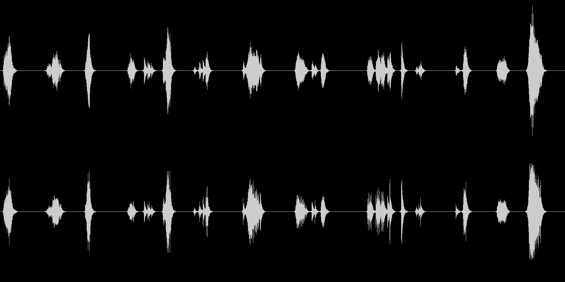 軋む床を歩く音の未再生の波形