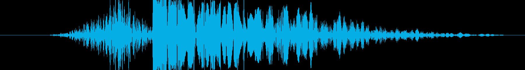 【いわゆるパンチ音】よく聞くあの感じの再生済みの波形