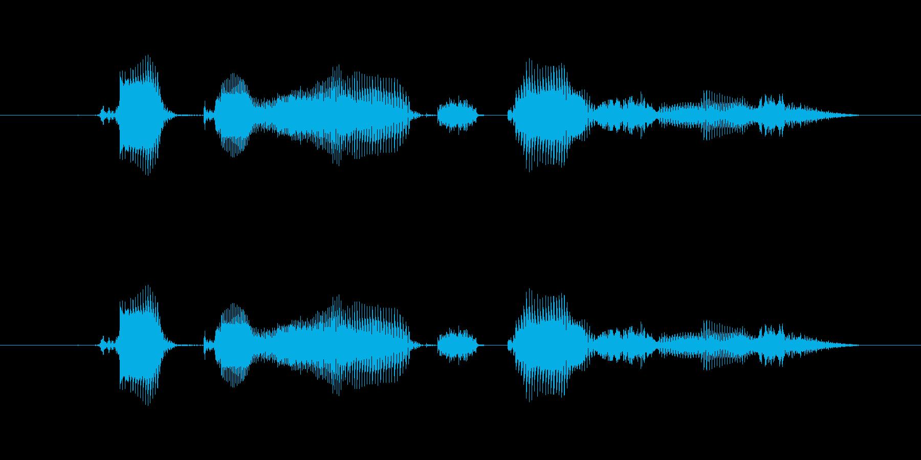【時報・時間】6時をお伝えしますの再生済みの波形