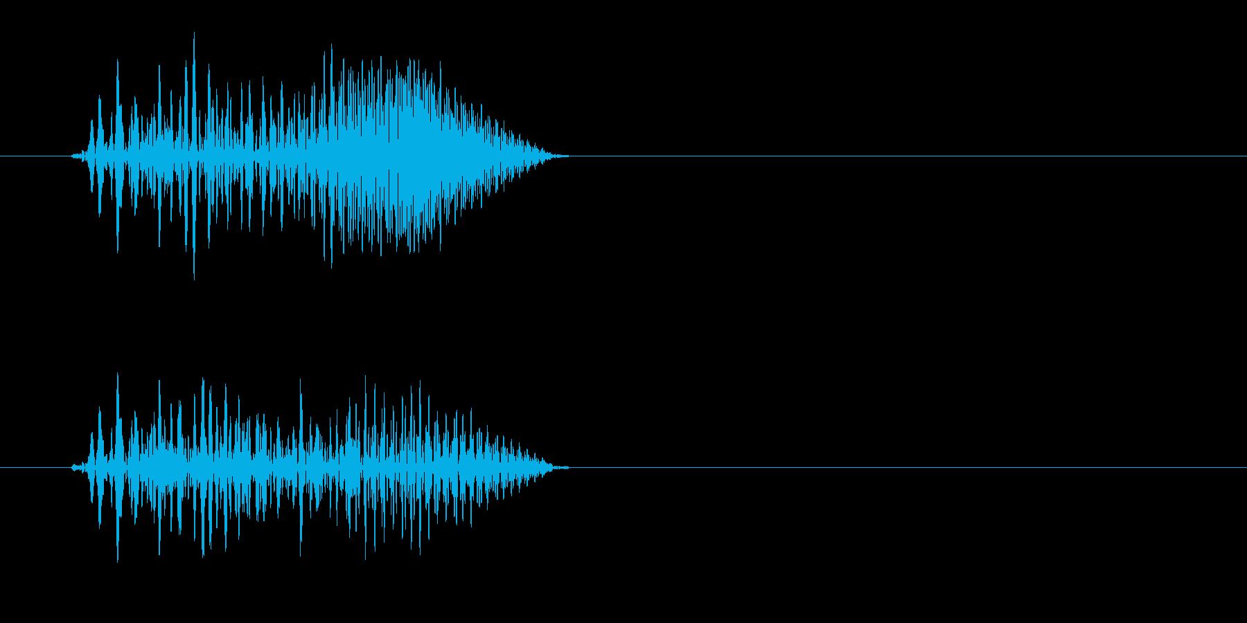 プェッ(短い高音色)の再生済みの波形