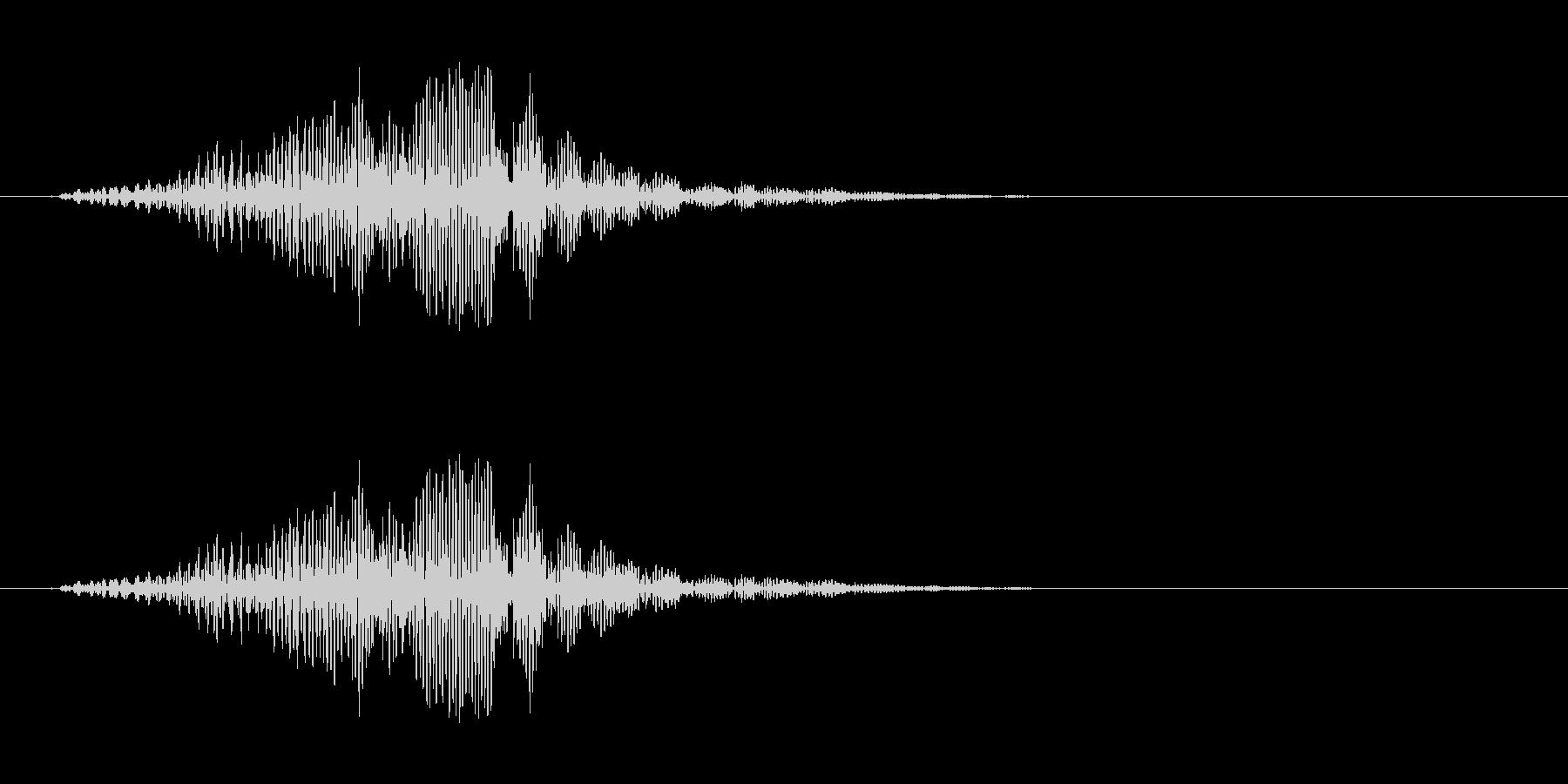 不気味に響く声らしき音…の未再生の波形