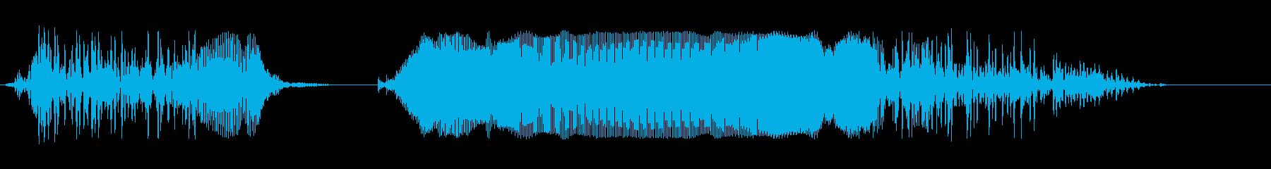 ばかーー!の再生済みの波形