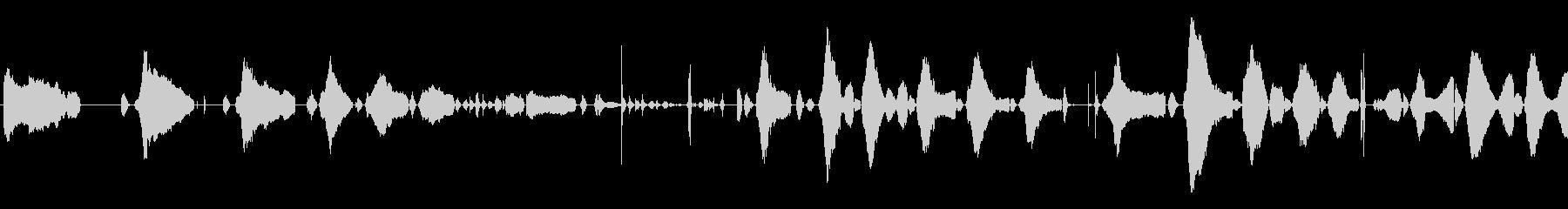 赤ちゃんの泣き声<泣き方 : 弱め>の未再生の波形