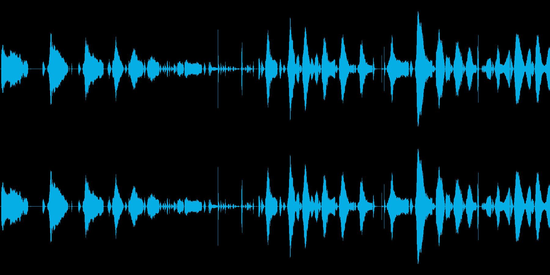 赤ちゃんの泣き声<泣き方 : 弱め>の再生済みの波形