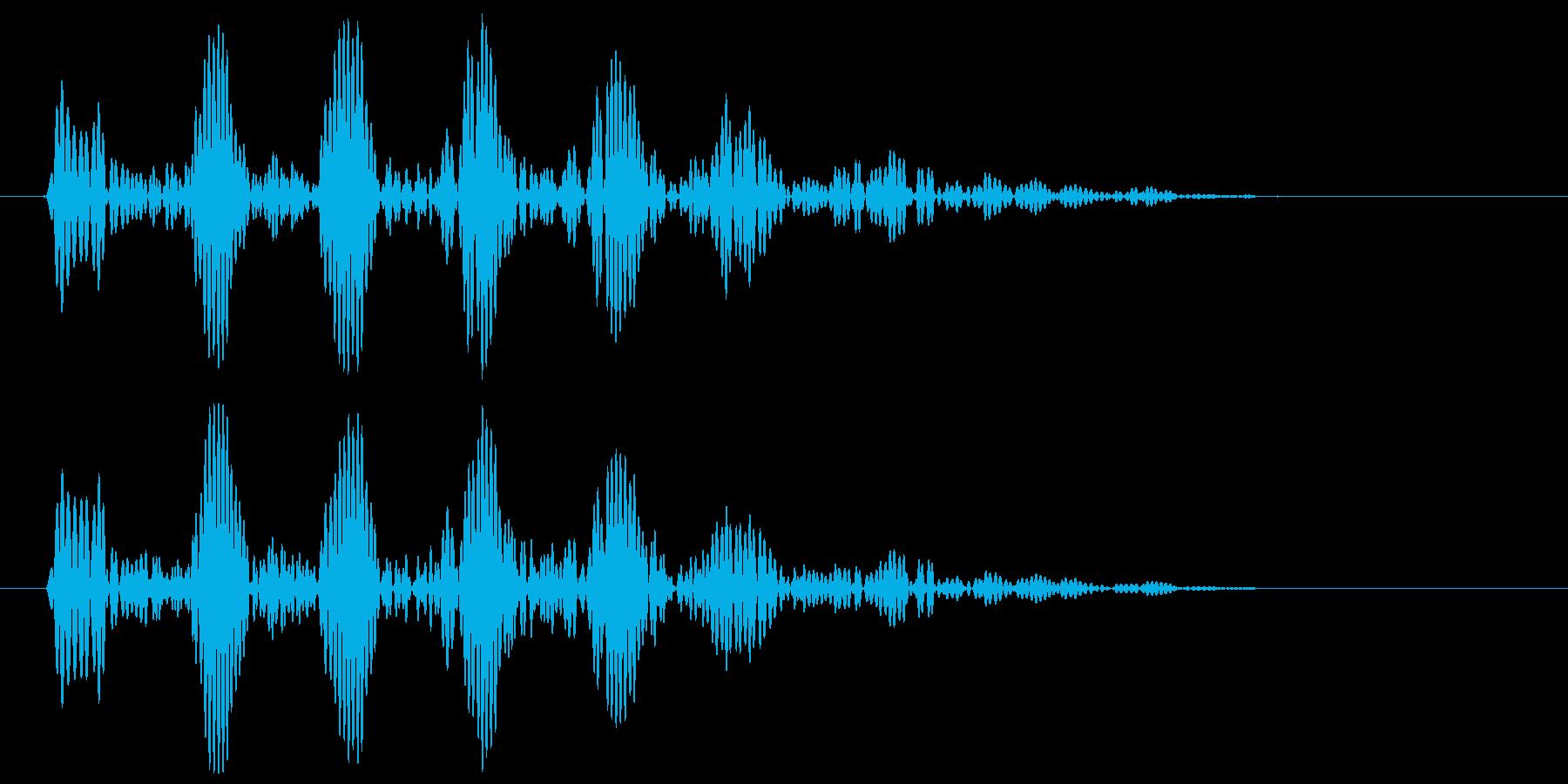 ふくろうの声(リアル)の再生済みの波形