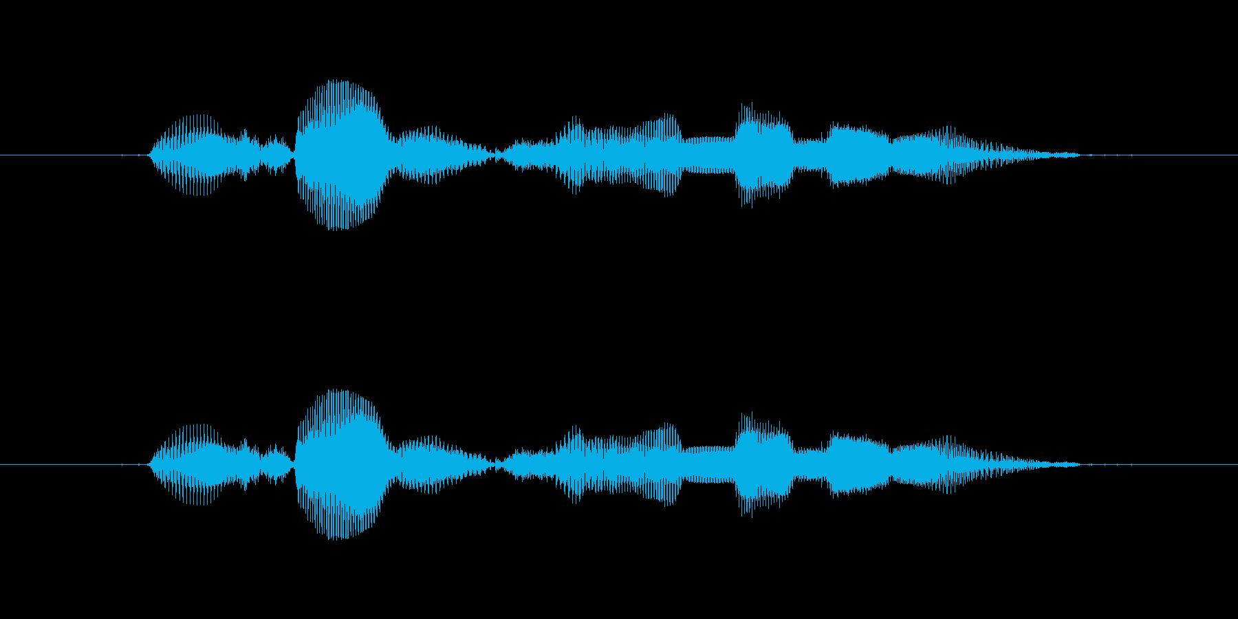 【西暦】2017年の再生済みの波形