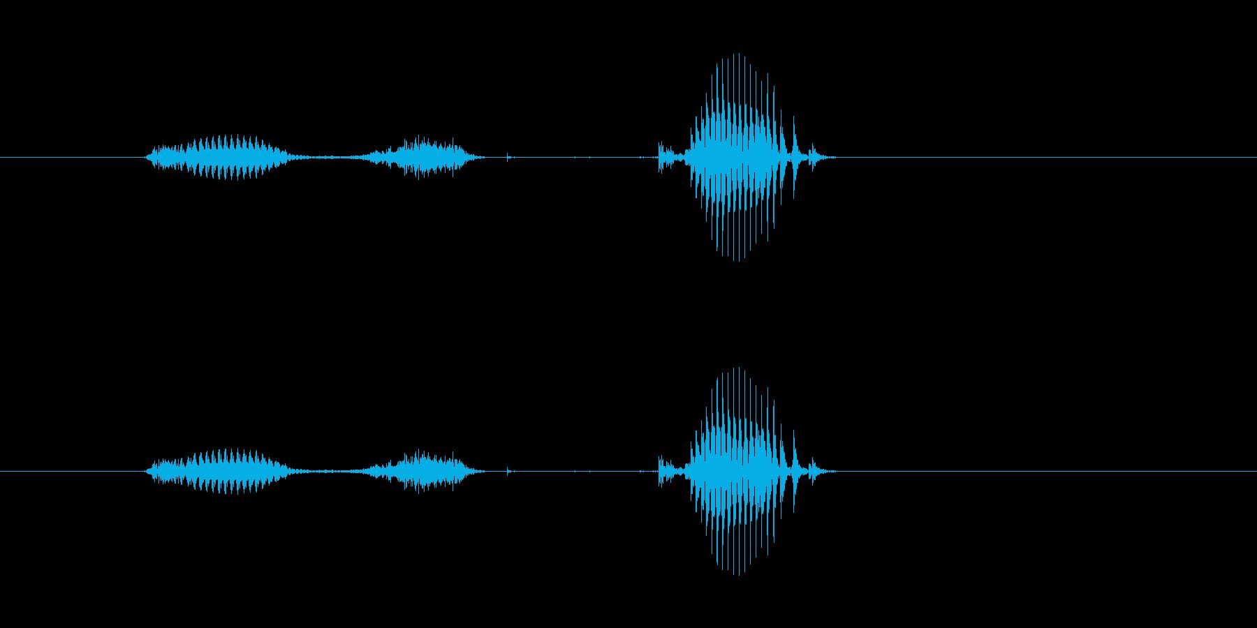 【日】5日の再生済みの波形
