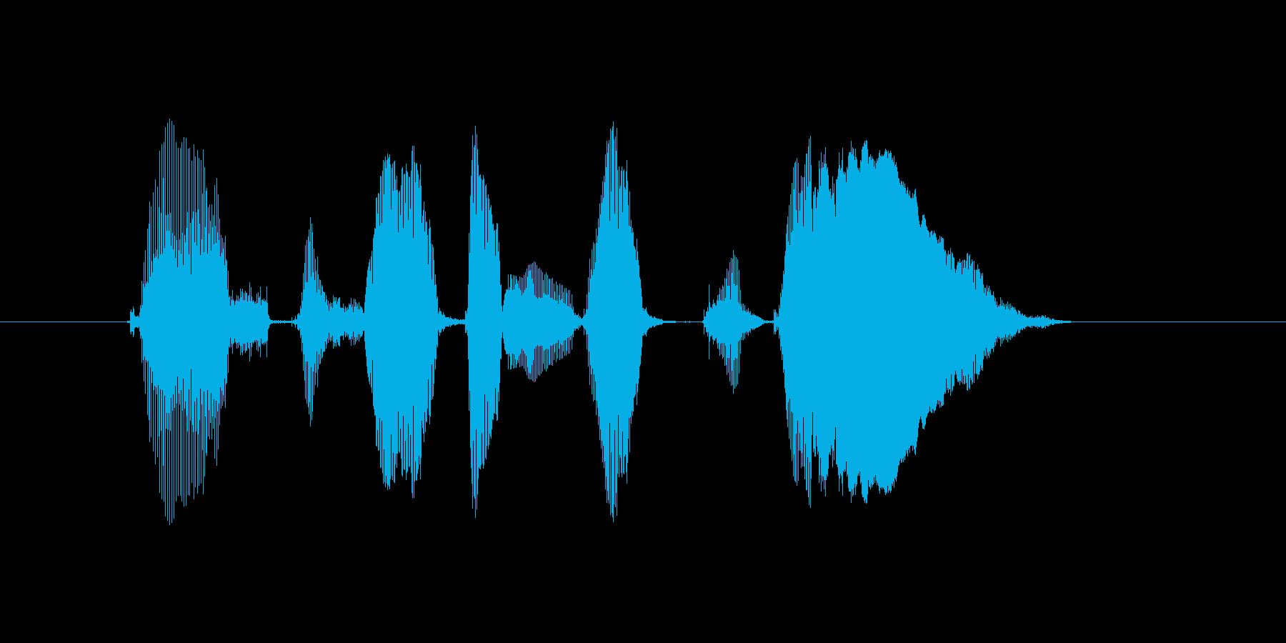 公式サイトにレッツゴーの再生済みの波形