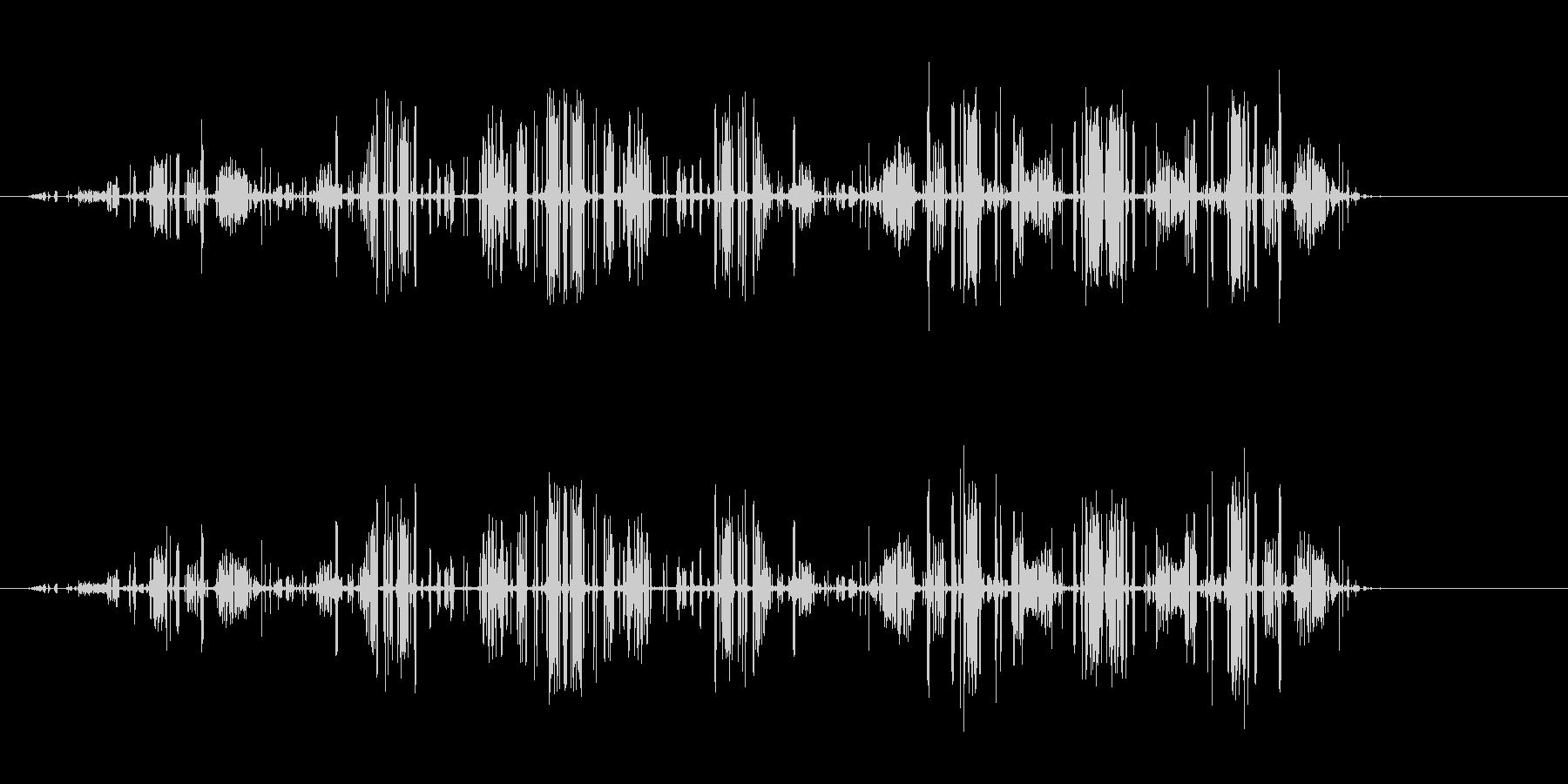 【電気の音】電流、ビビッ、バリバリ、ビリの未再生の波形