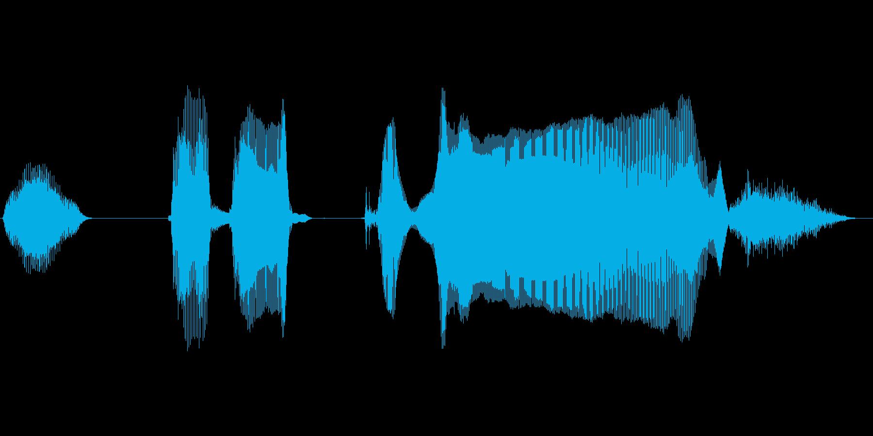 いっただっきまーすの再生済みの波形