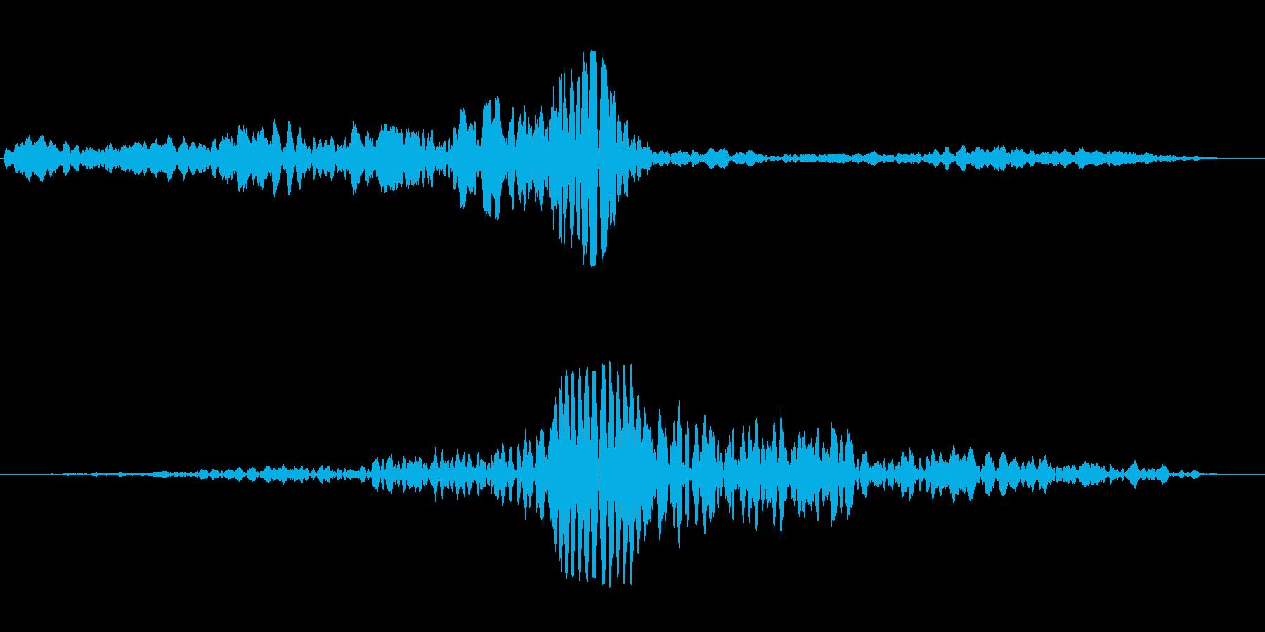 ホ〜フー(宇宙船 宇宙人)の再生済みの波形