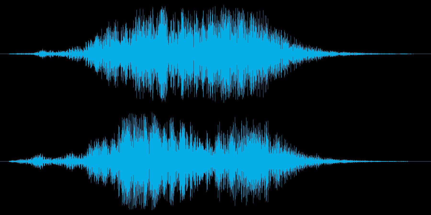 フオーン(風の吹くような効果音)の再生済みの波形