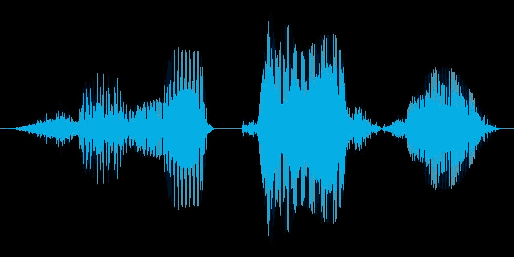 その調子!1【ロリキャラの褒めボイス】の再生済みの波形