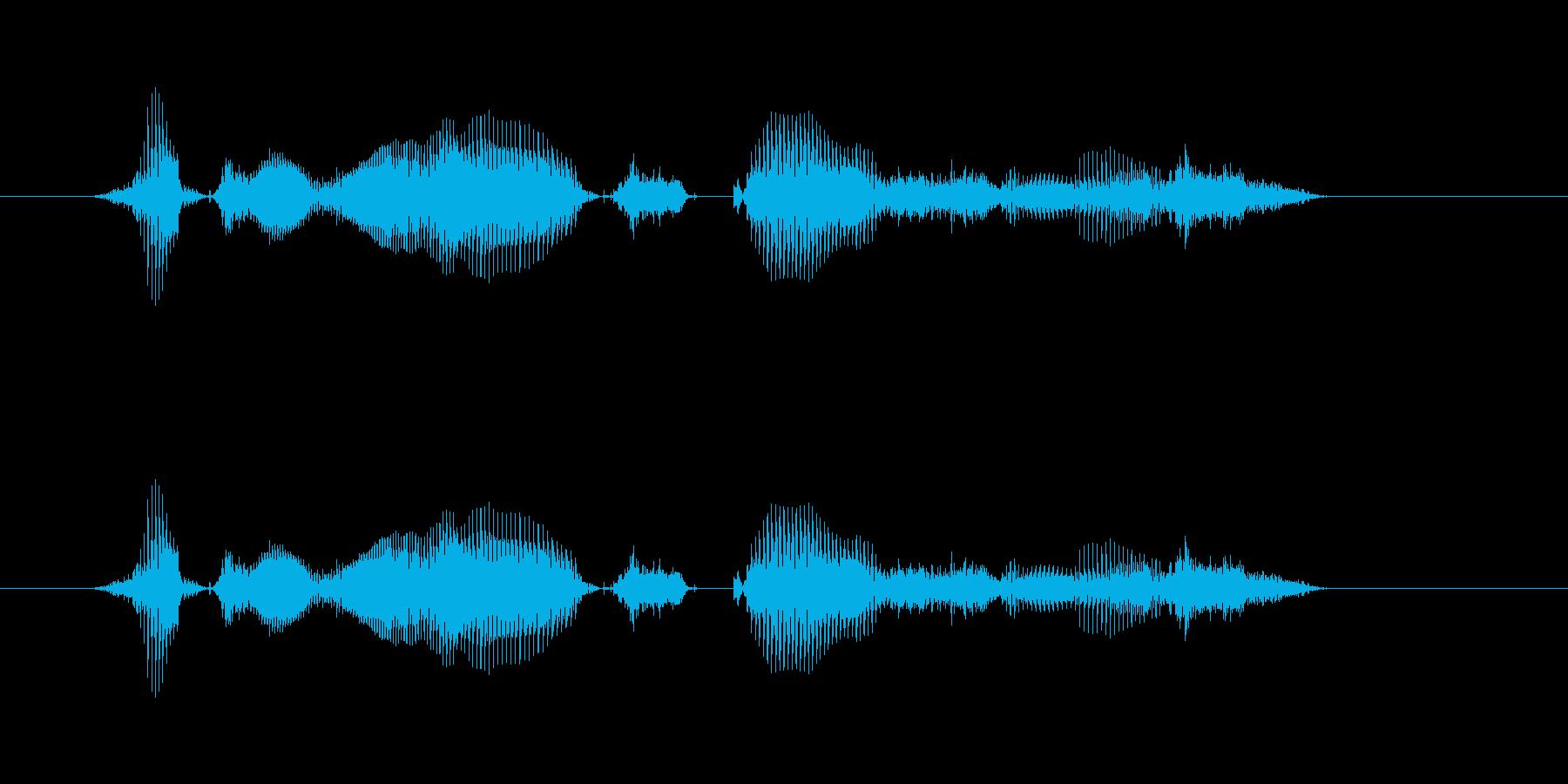 【時報・時間】8時をお伝えしますの再生済みの波形