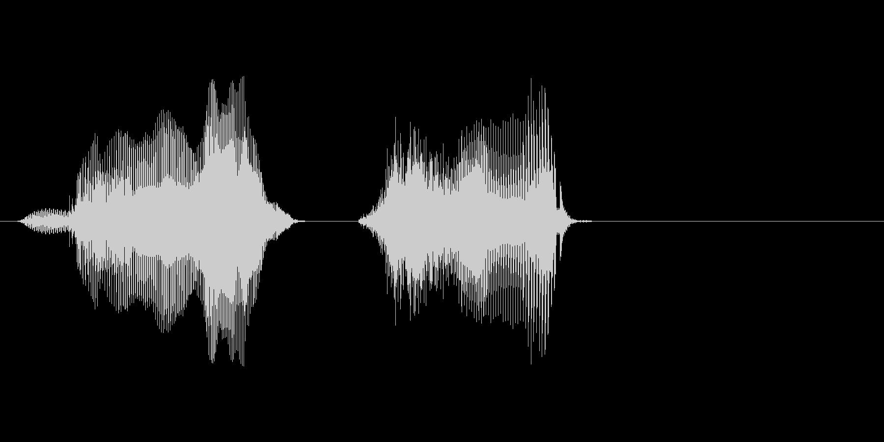 ドイツの未再生の波形