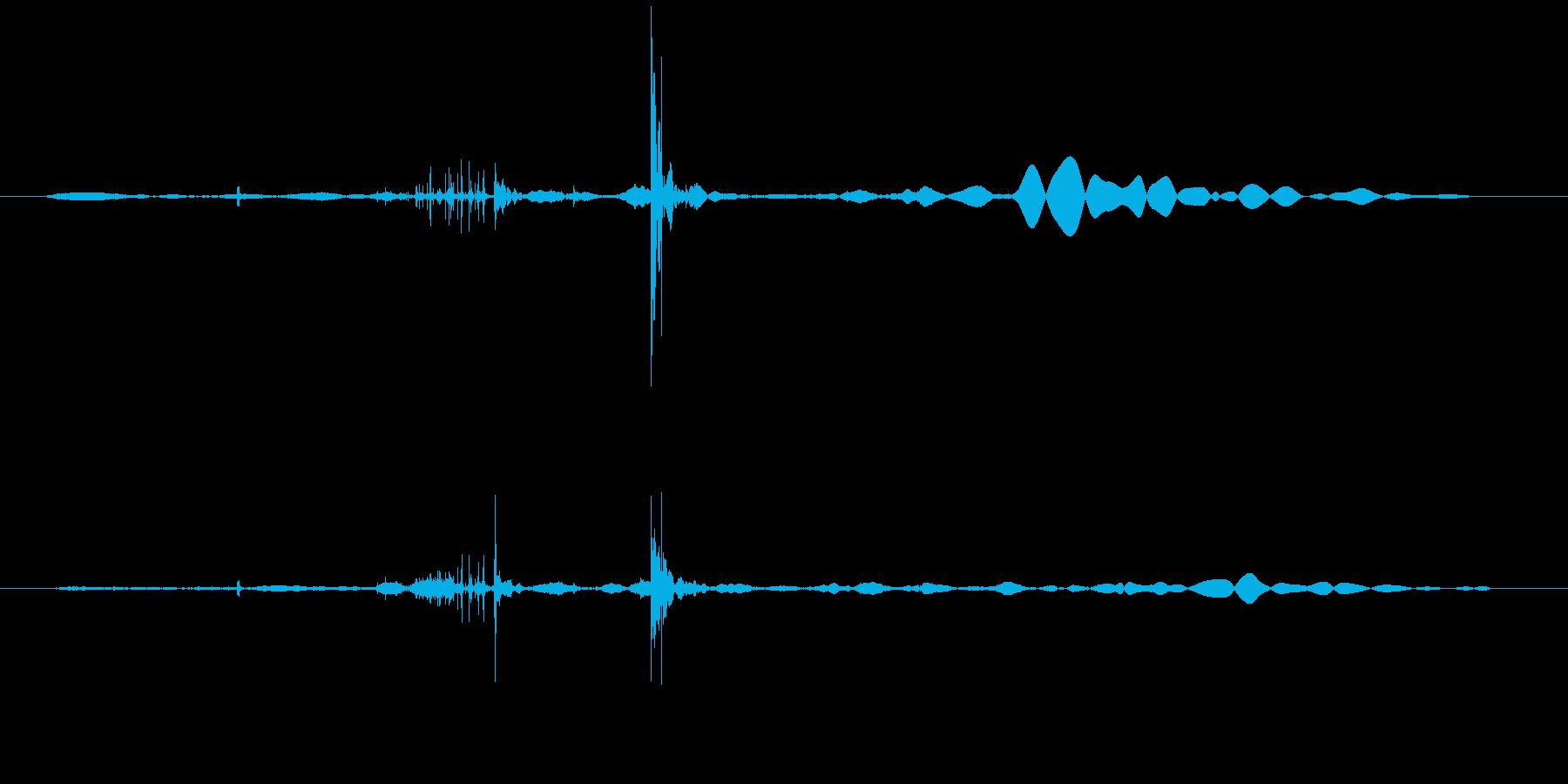 ヘッドフォン 装着の再生済みの波形
