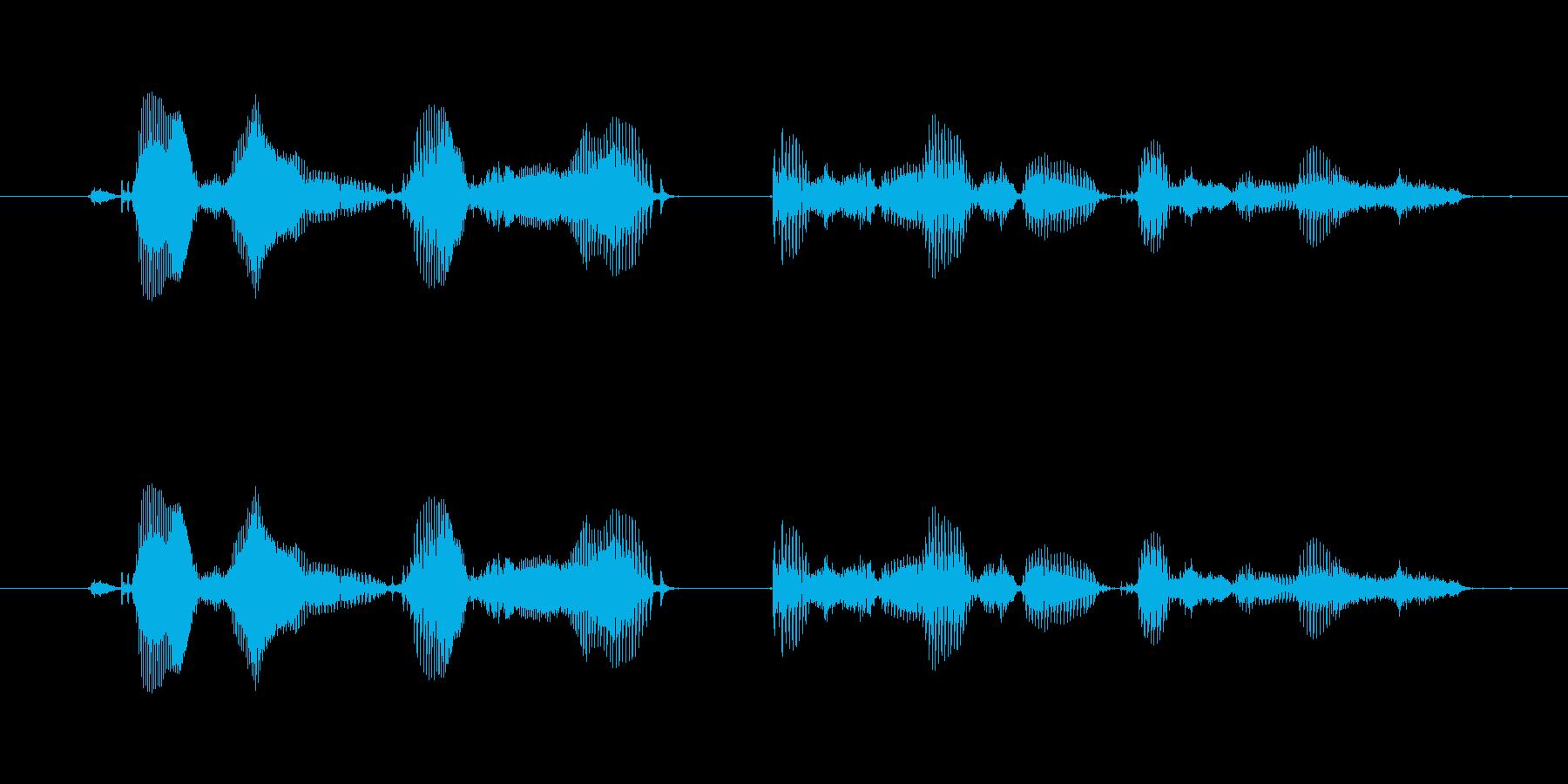 【時報・時間】午前5時を、お知らせいた…の再生済みの波形