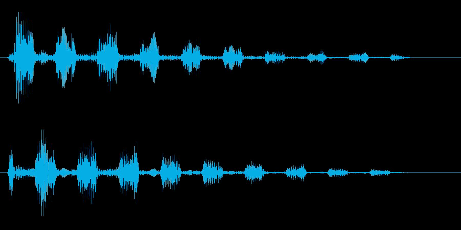 ピロピロリ(クリック音)の再生済みの波形