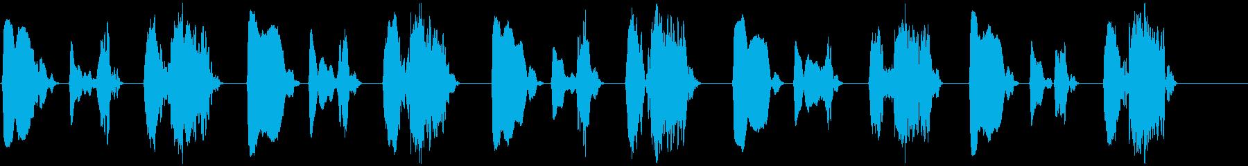 キジバト 長め ホーホー ホッホーの再生済みの波形