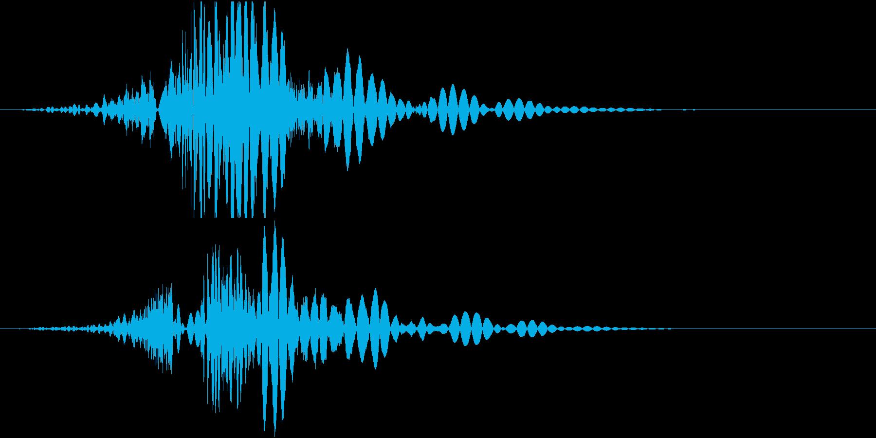 パンチ、8割リアルと2割のディフォルメの再生済みの波形