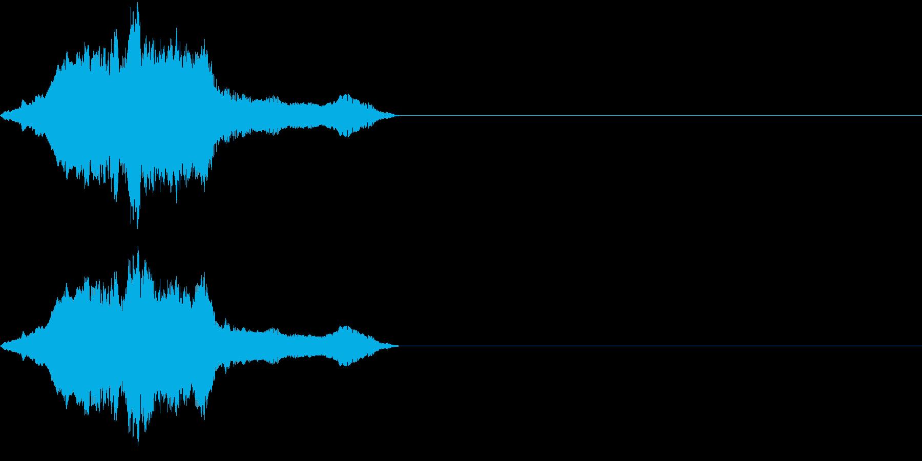 コツメカワウソの鳴き声(甘えるような声)の再生済みの波形
