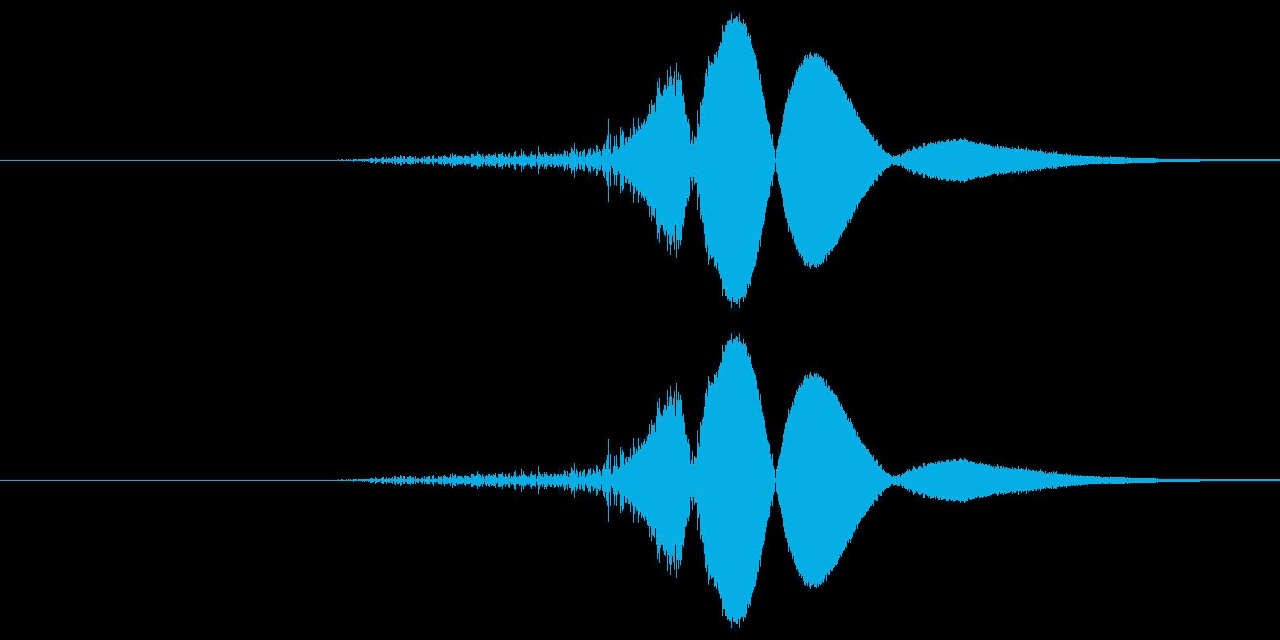 ヒュの再生済みの波形