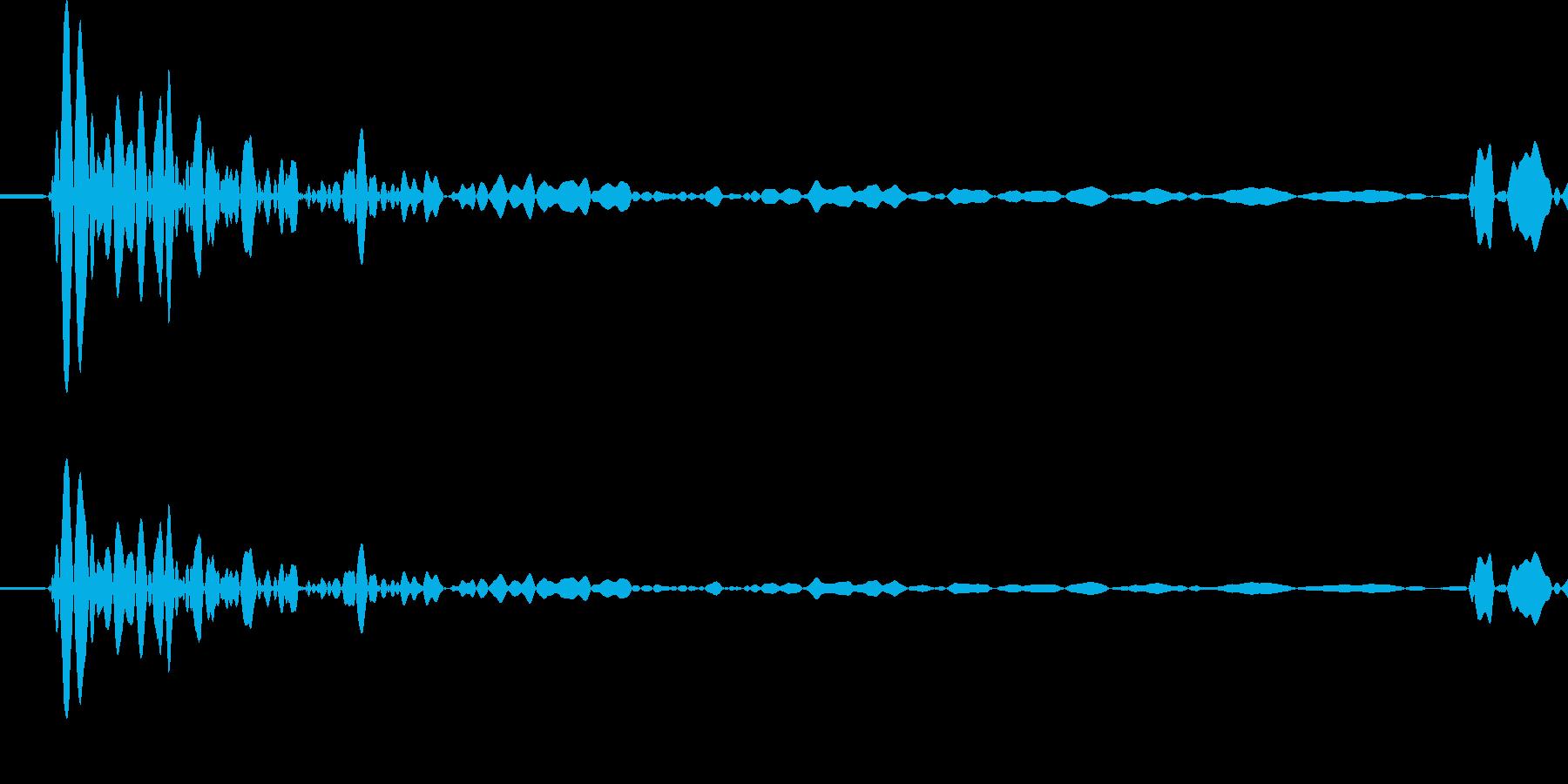 タッ (足音)の再生済みの波形