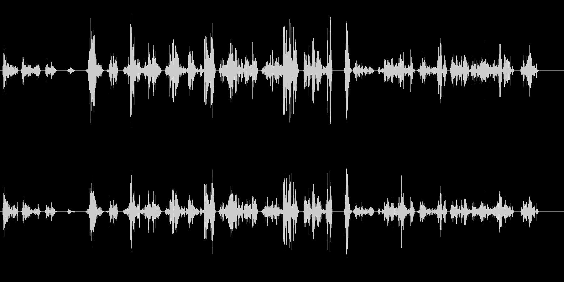 ペチャクチャ(早口気味の会話音)の未再生の波形