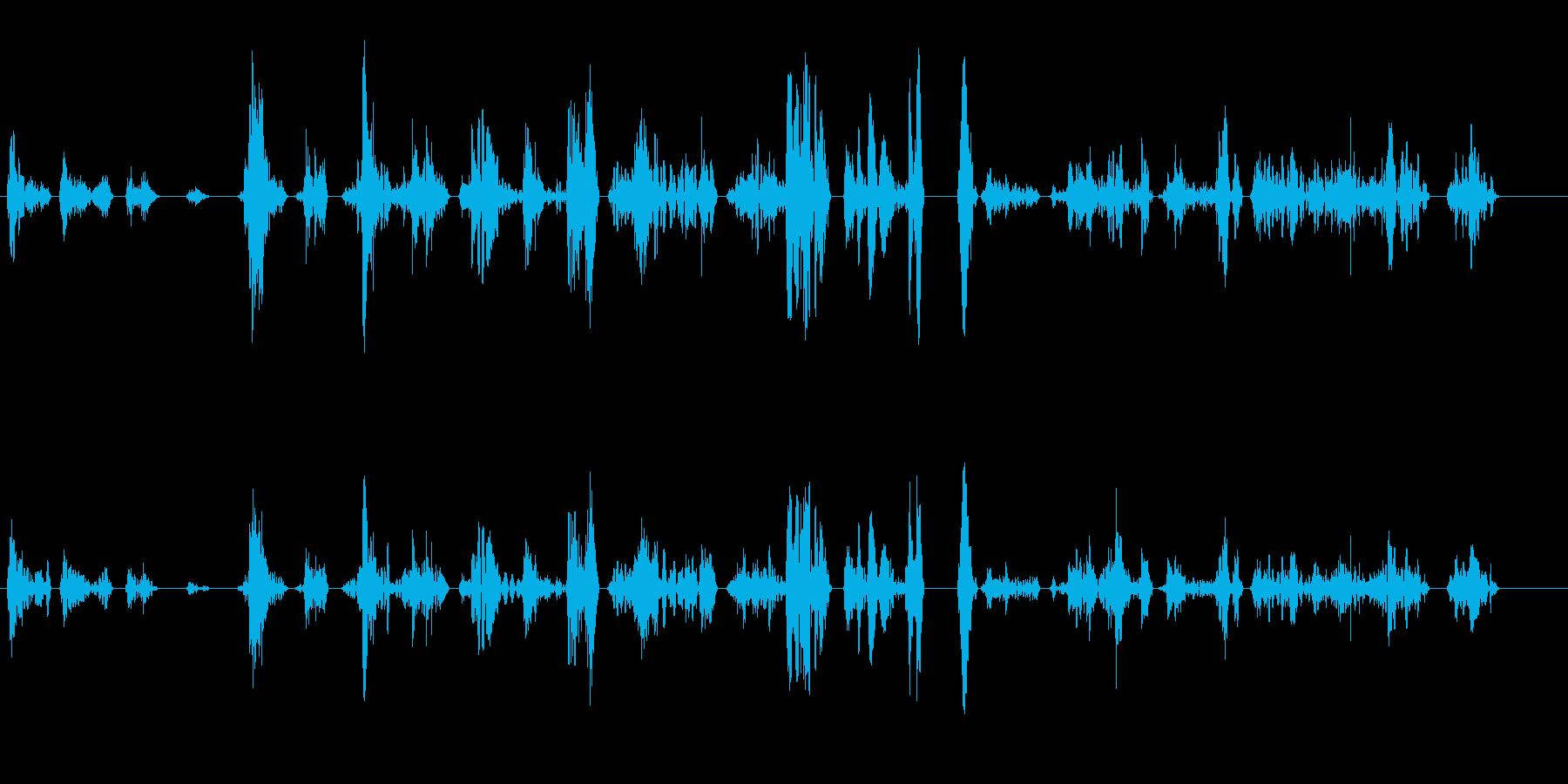 ペチャクチャ(早口気味の会話音)の再生済みの波形