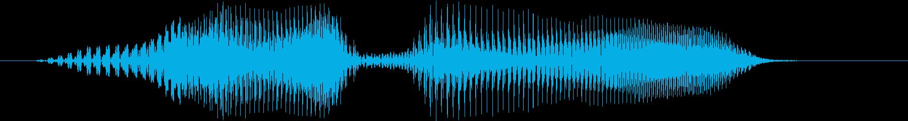 レディーの再生済みの波形