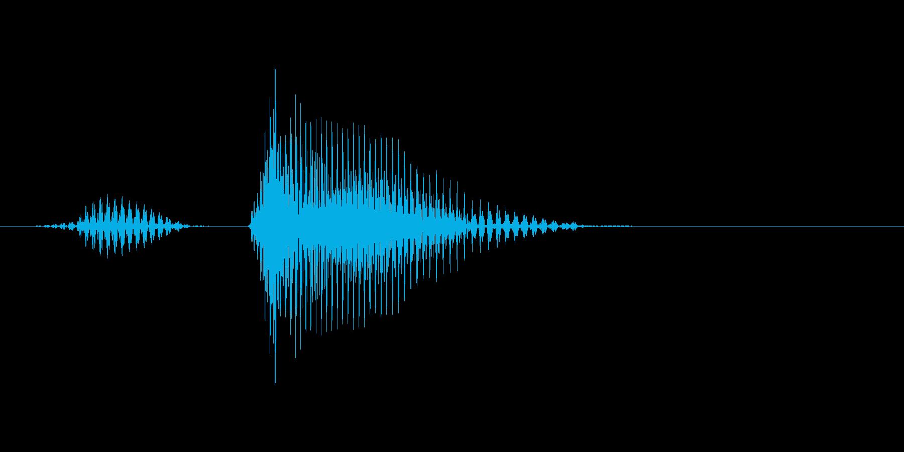 リターンの再生済みの波形