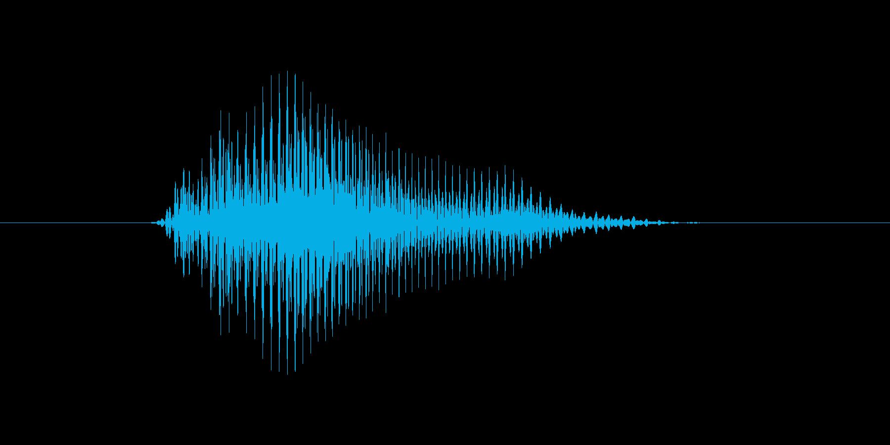 y,Y,Y(ワイ)の再生済みの波形