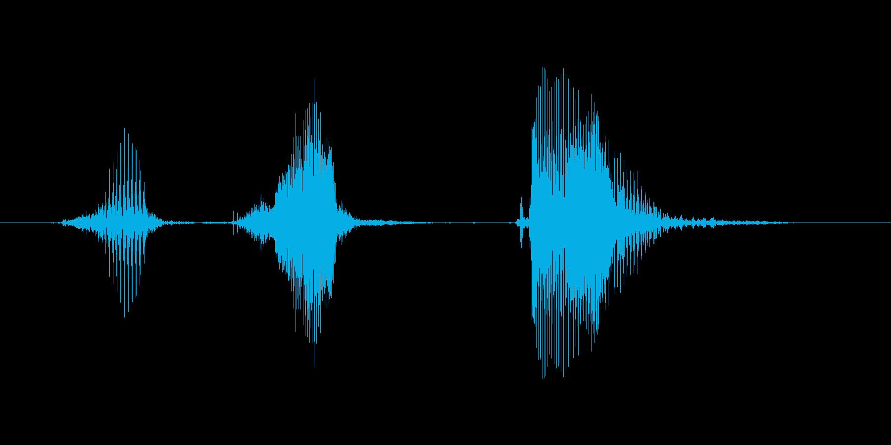 【ボイスSE】ポチッとの再生済みの波形