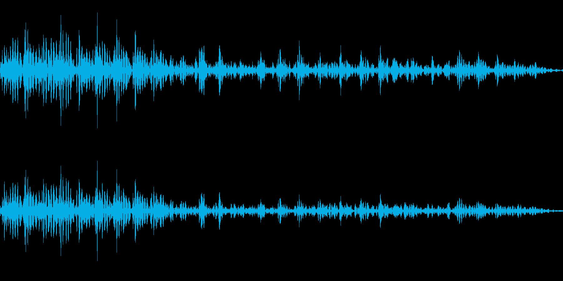 アフリカライオンのうなり声(最も低い声)の再生済みの波形