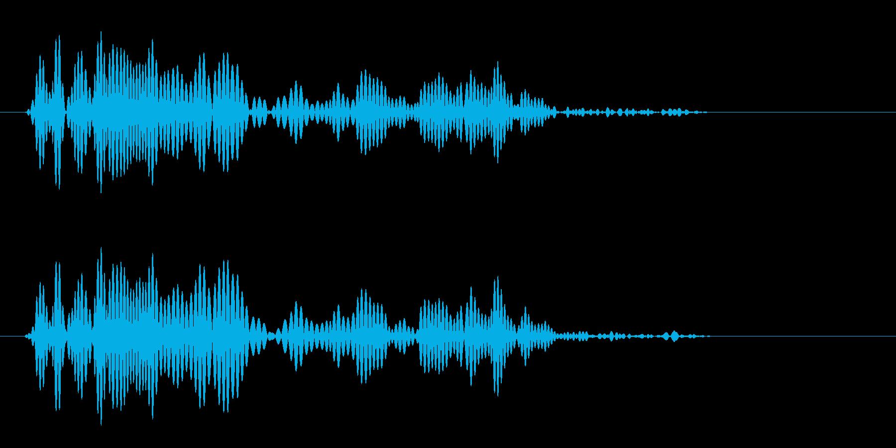 ゴバッ(短めの音色)の再生済みの波形