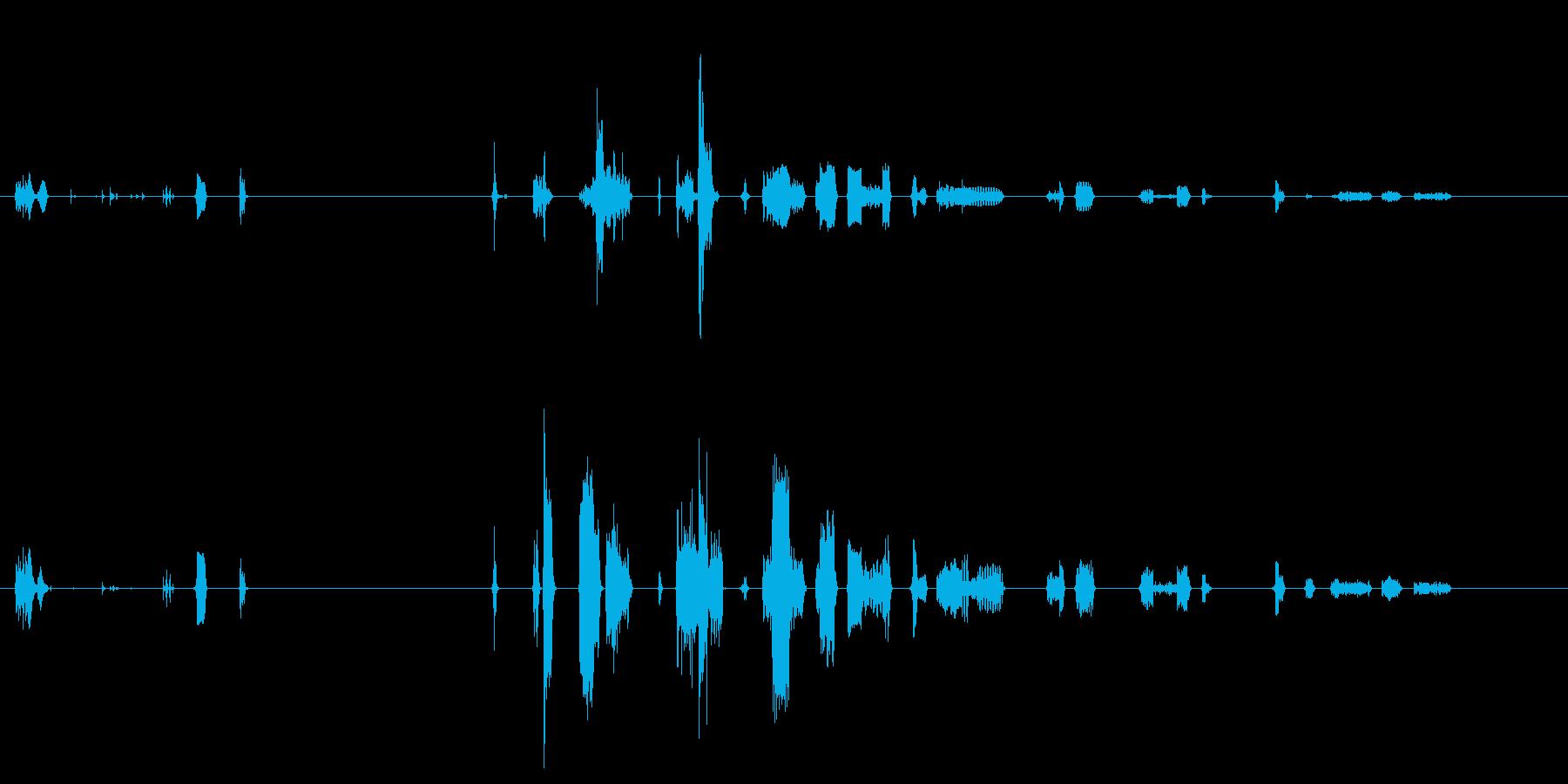 【SE 効果音】機会的なノイズの再生済みの波形