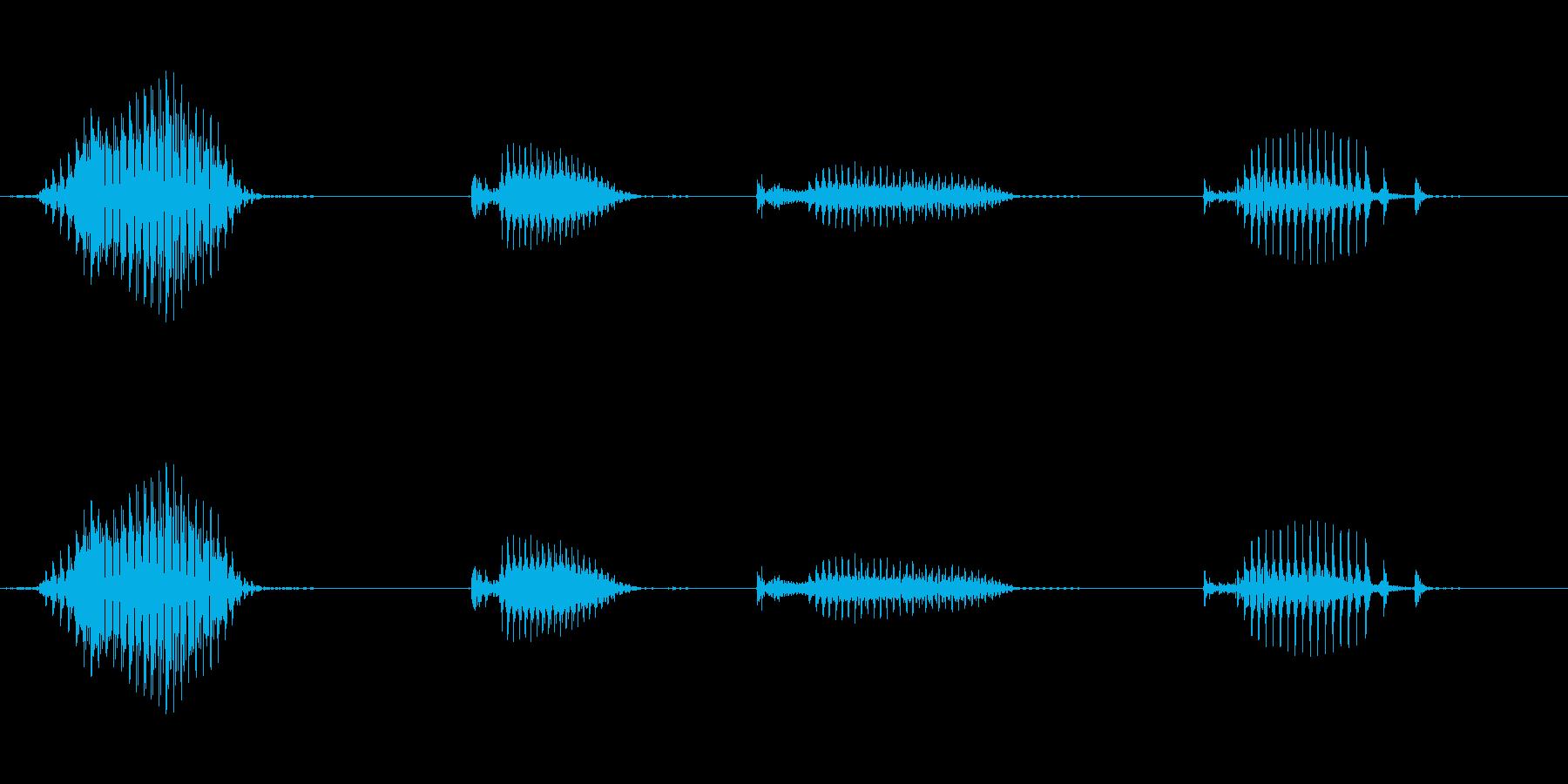 【日数・経過】4日経過の再生済みの波形