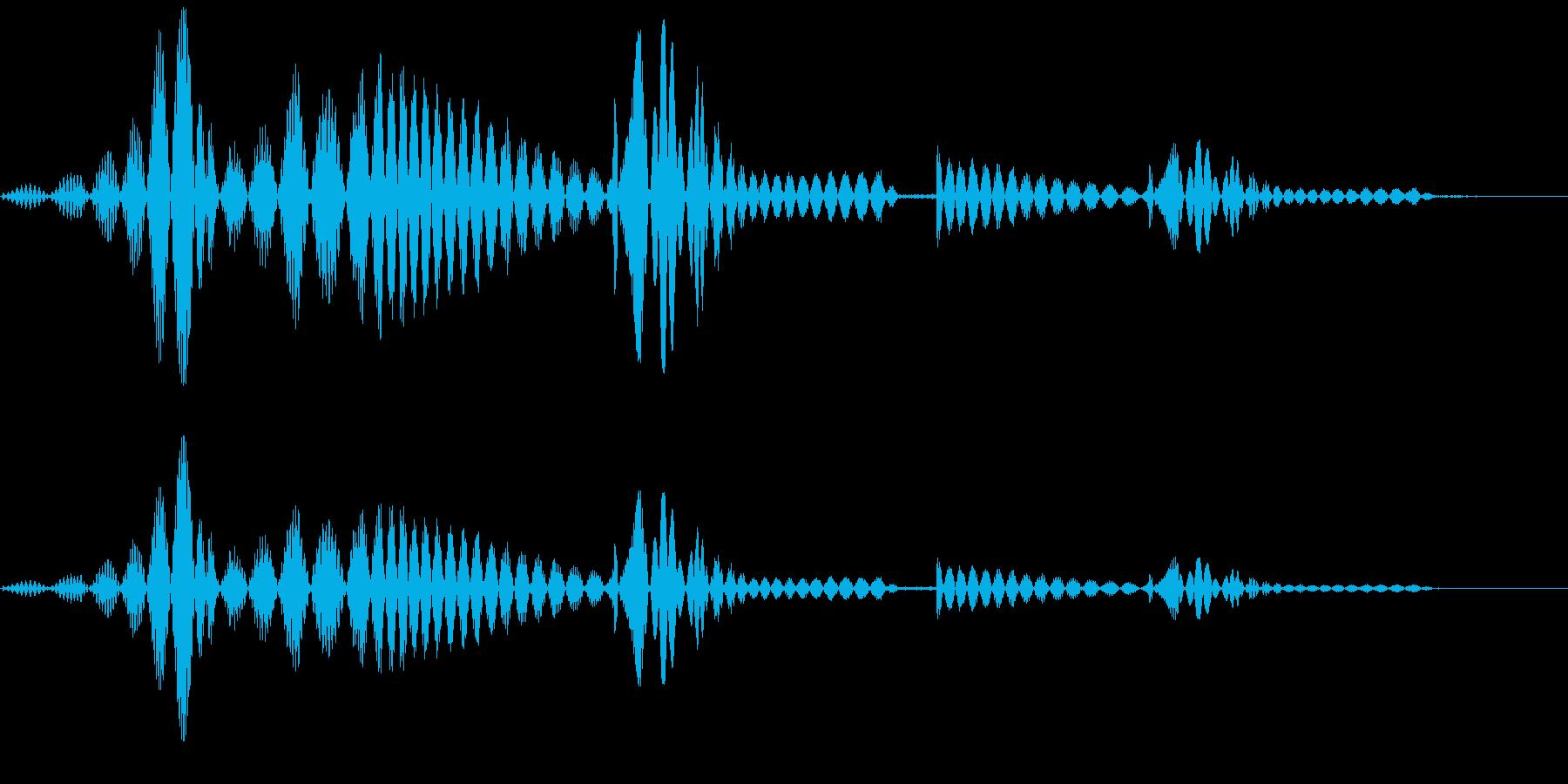 ニュッと何かを取り出す(跳ねる音など)の再生済みの波形