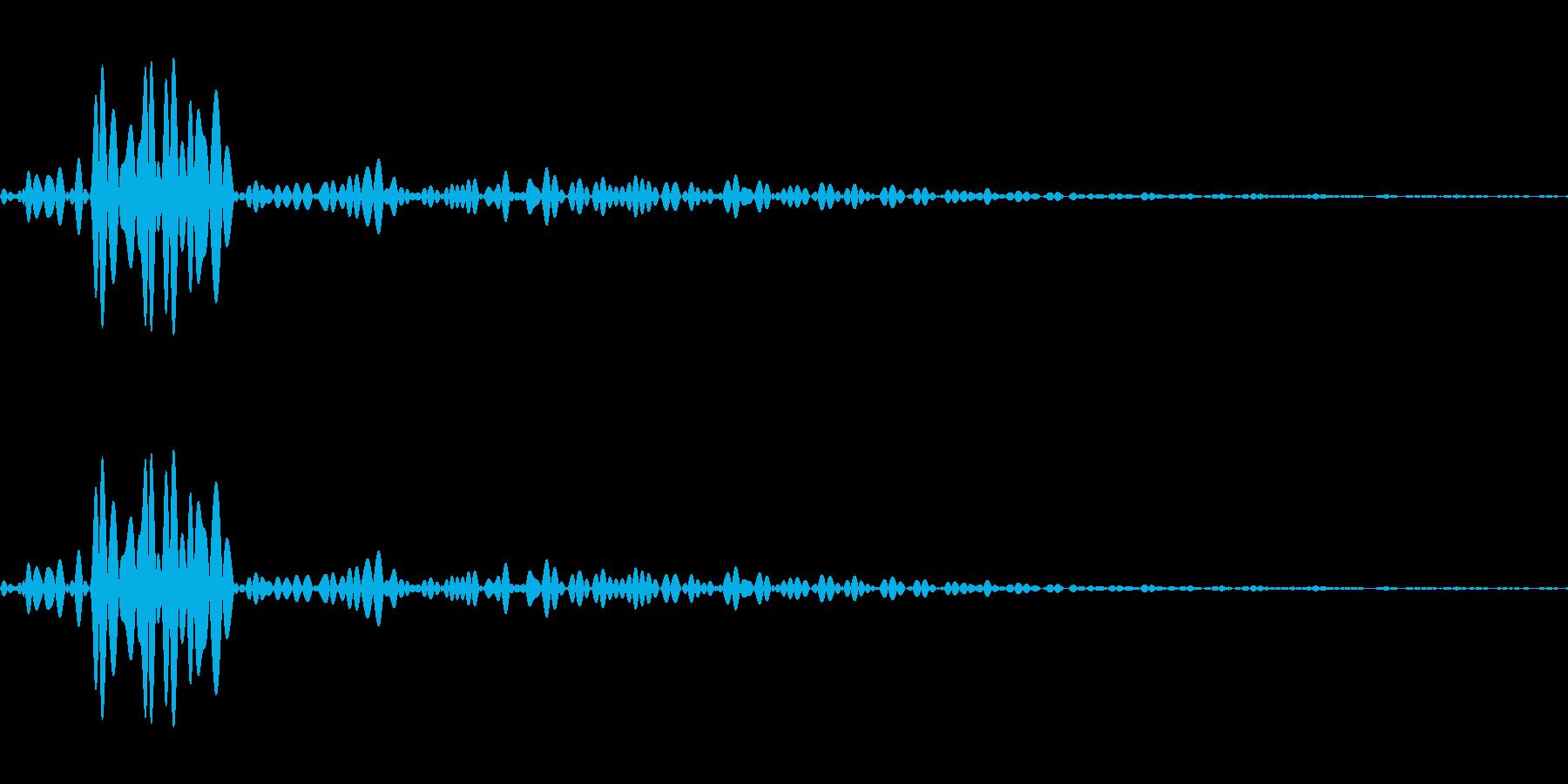 心音1回ループなしの再生済みの波形
