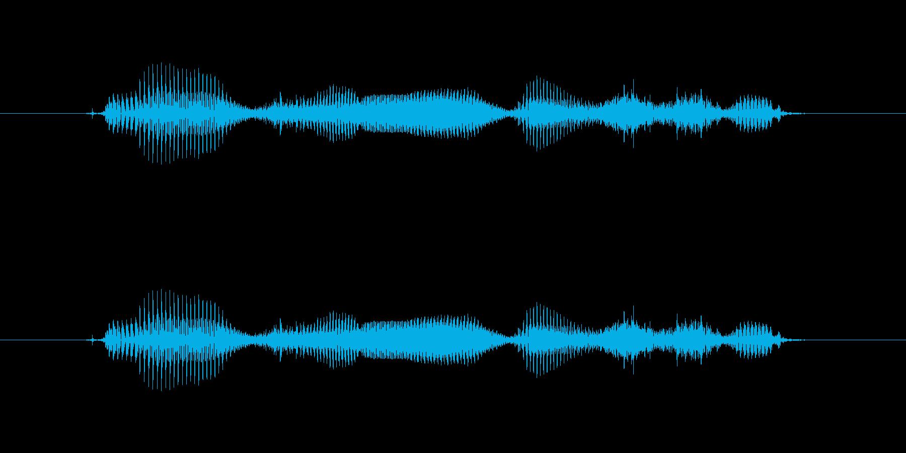 【干支】ネズミ年の再生済みの波形