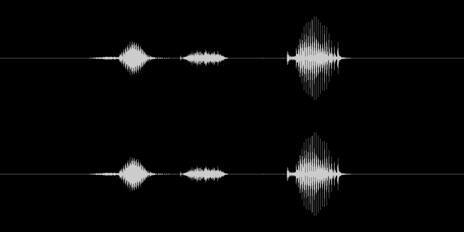 【日】2日の未再生の波形