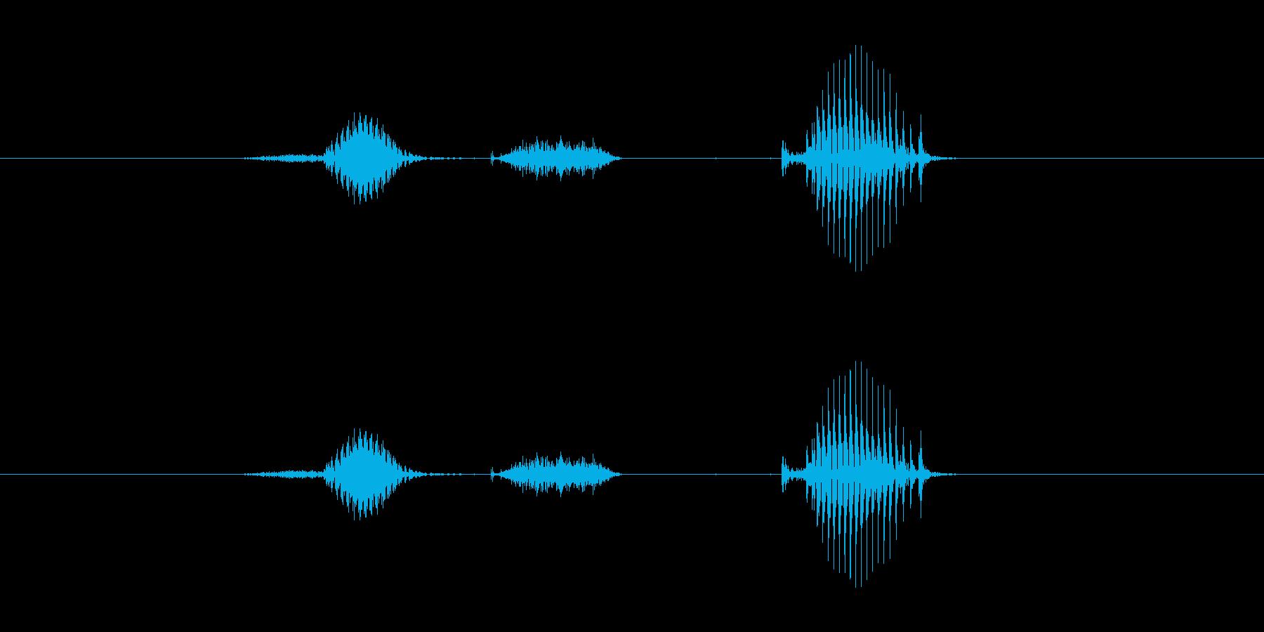 【日】2日の再生済みの波形