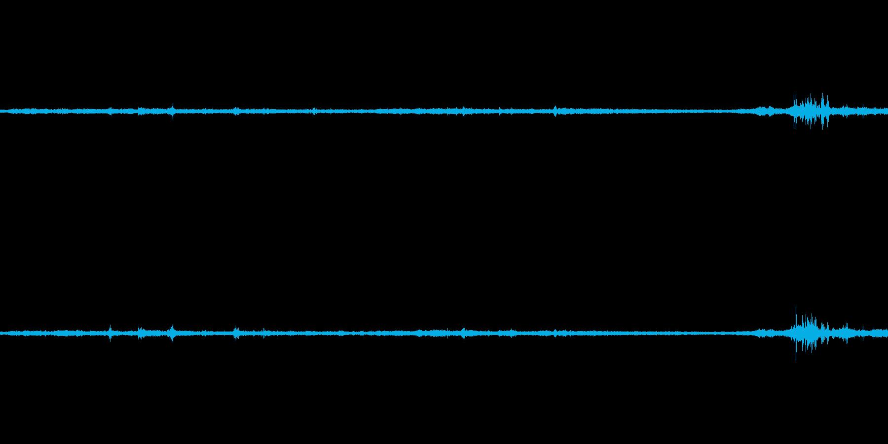 島根県島前のセミの声の再生済みの波形