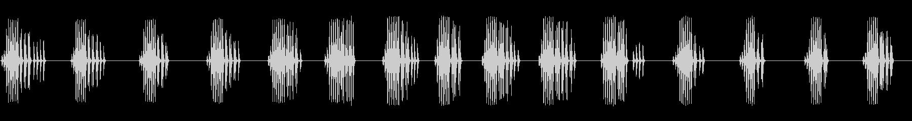 エンマコオロギの鳴き声の未再生の波形