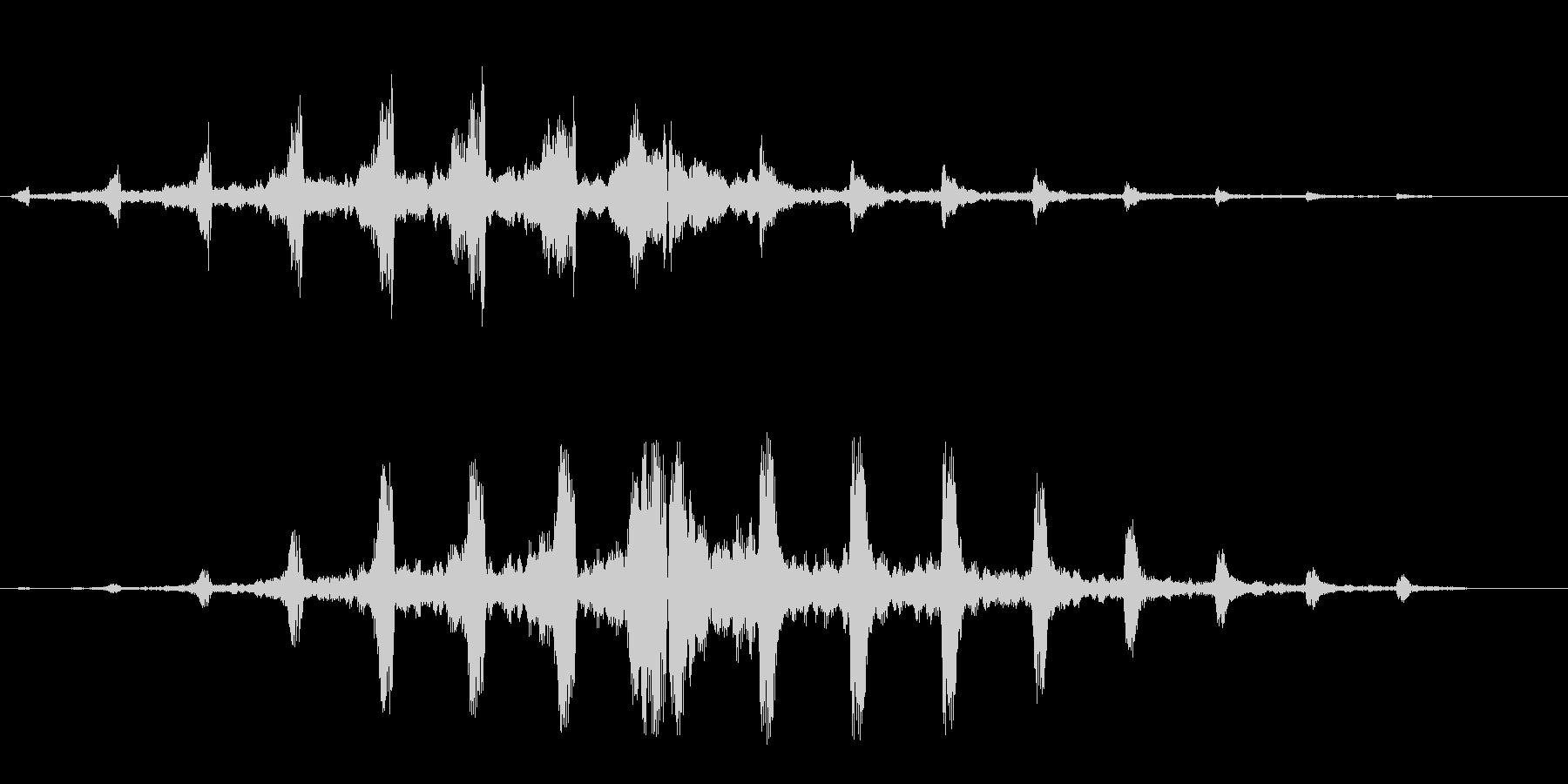 シュリリ(鳴き声・回転系の音)の未再生の波形